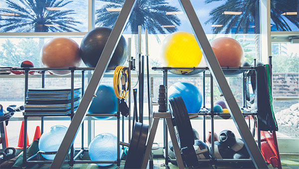 BayCare Fitness Centers have a variety of fitness equipment.
